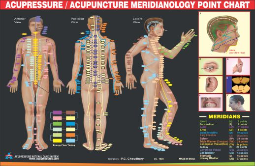 Meridianology Chart - For Face Point
